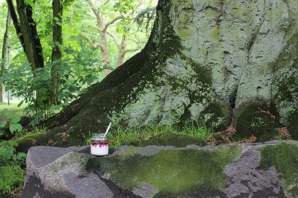 Overnight-Oats-mit-gemischten-Beeren