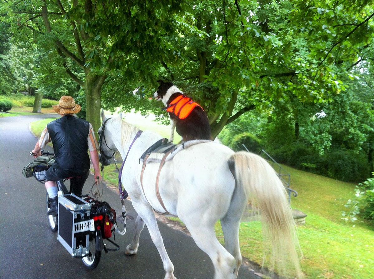 Kein Pferd auf dem Flur, dafür ein Hund auf dem Pferd...